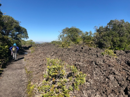 Lava field before the plants take over